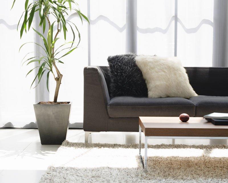Designer sofa two washable cloth sofa